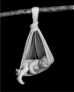 Newborn baby in hammock by Treasured Moments Photography