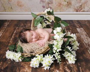 Newborn in flower basket by treasured moments photography